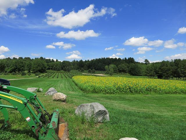 agriculture-entrepreneur